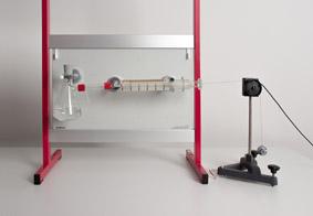 Concentration et vitesse de réaction : le magnésium dans des acides forts et faibles